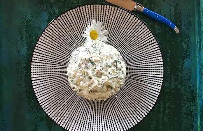 Fetaaufstrich mit Joghurt; YOGUT Starterkulturen