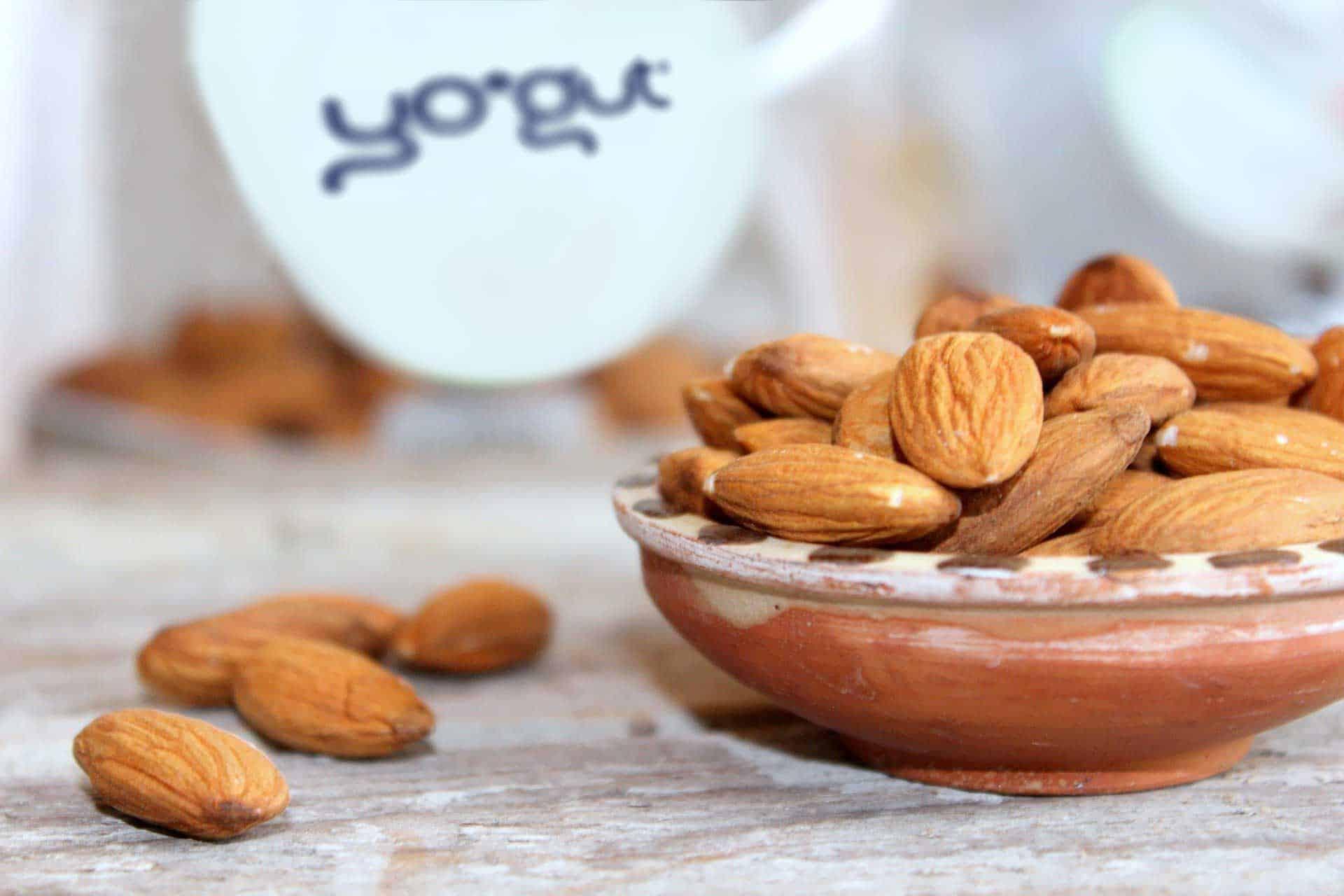 Mandelmilch für pflanzliche vegane Joghurtalternative YOGUT Starterkulturen