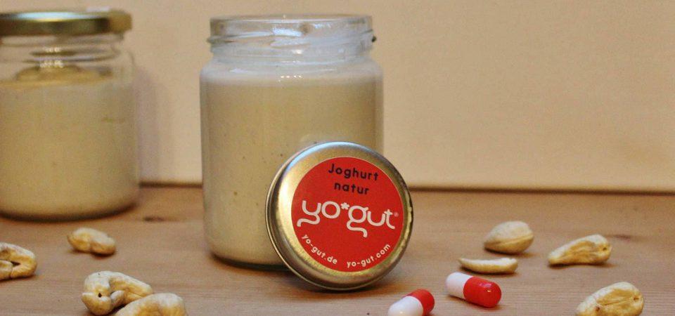 Joghurt mit Cashew-Nüssen