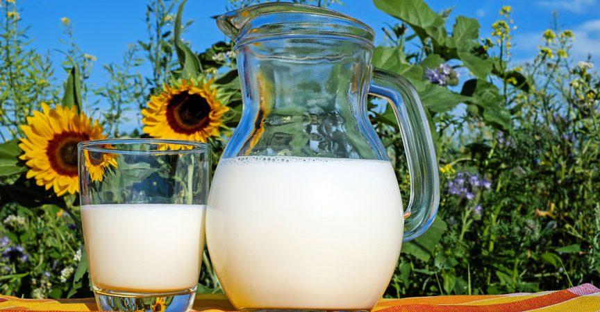 Milch als Basis für Joghurt