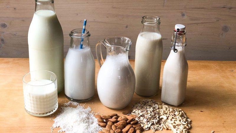 Milchsorten Joghurt selber machen vegane Pflanzendrinks